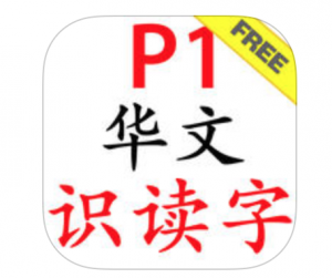P1 Chinese flash cards