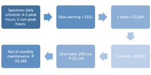 GRAB income illustration
