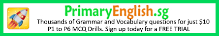 Primary School English Grammar and Vocabulary Drills
